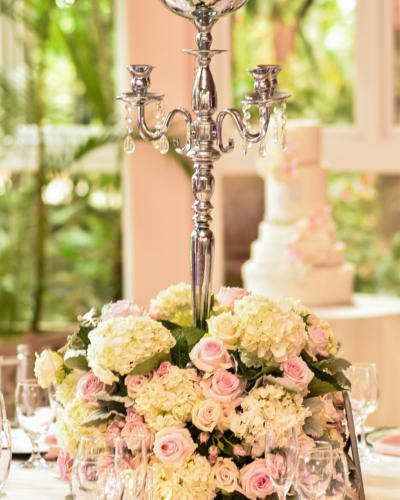 Sapodilla Weddings in The Bahamas